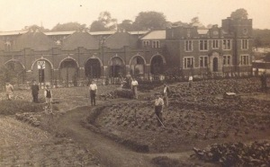 German POWs Working on Local Farms, Handforth